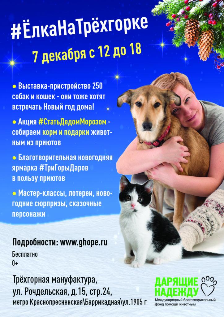 """Мы участвует в новогодней выставке-пристройстве собак """"Елка на трехгорке"""""""