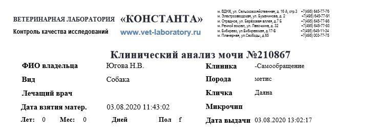 Отчет за август 2020