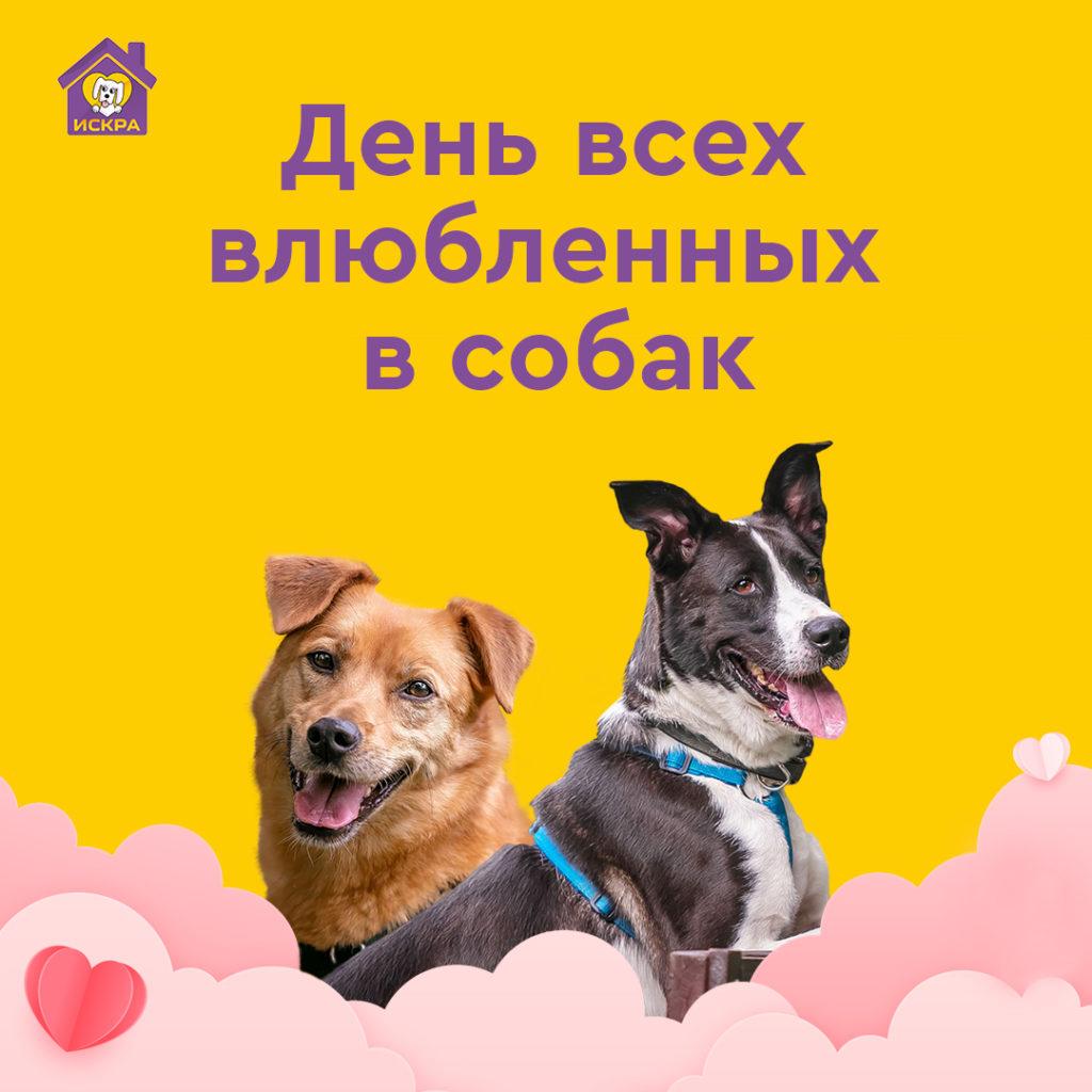 День всех влюбленных в собак