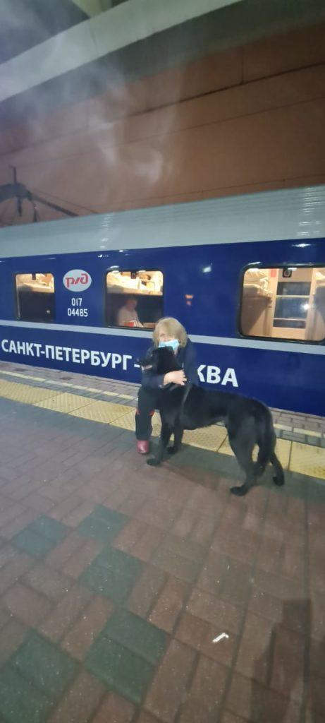 Черни поехал в новую семью на поезде