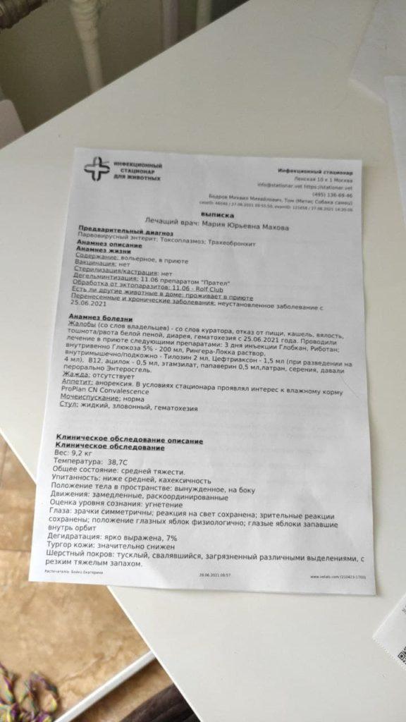 Отчет за июнь 2021